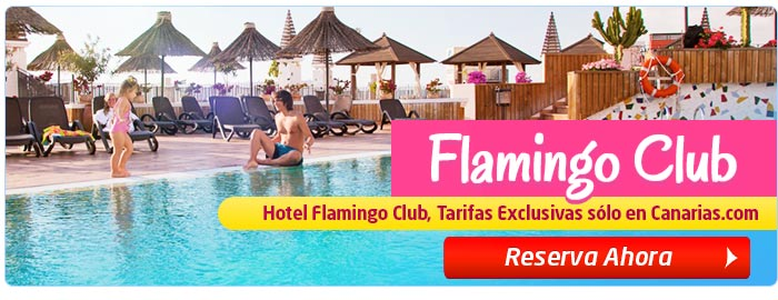 Flamingo Club Ofertas Exclusivas en Canarias.com