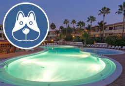 Hotels in the Canaries that admit pets