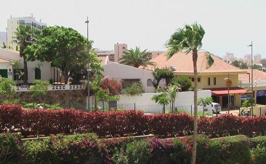 Villa Las Flores y su entorno